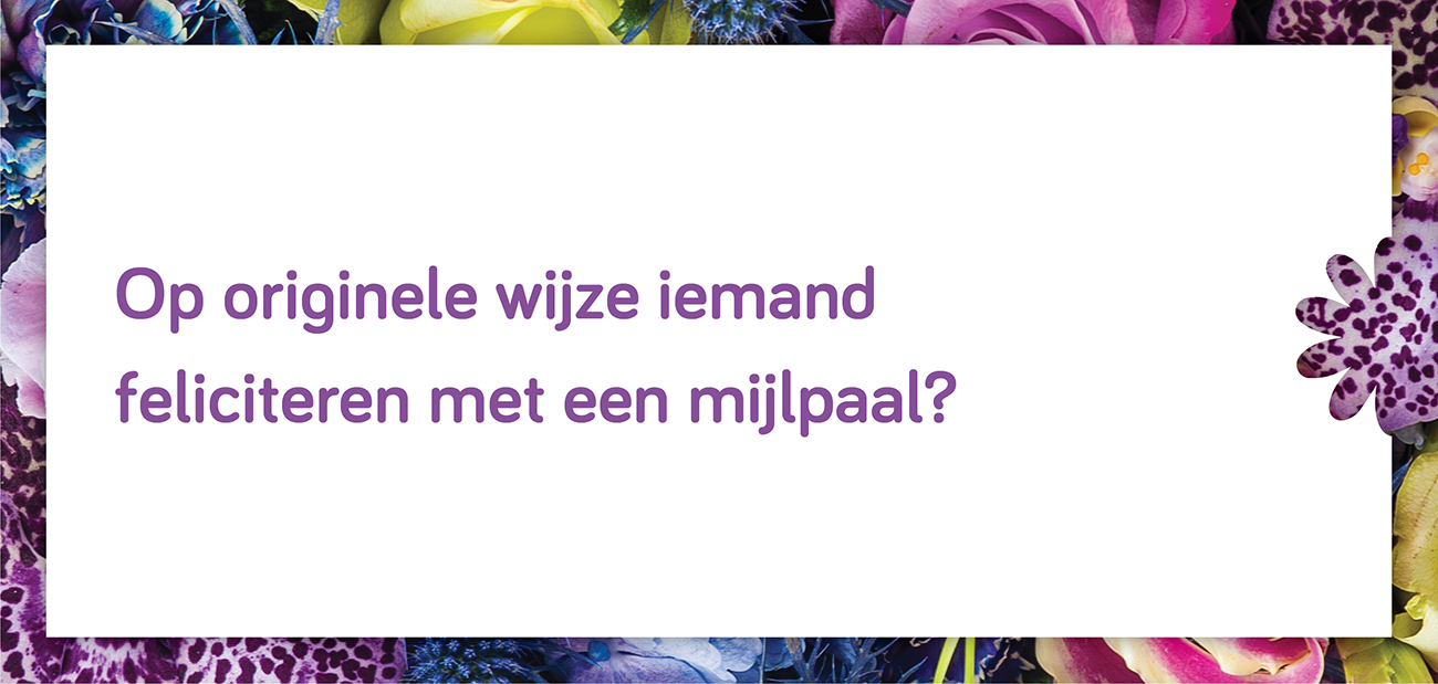 Flower Mystery Box - Headerafbeeldingen - 01 - Optiekleur - Paars.jpg